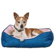 """You & Me 20"""" x 17"""" Extra Small Coral Dog Bed"""