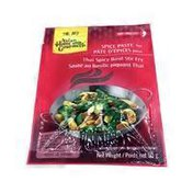 Asian Home Gourmet Spice Paste, Hot