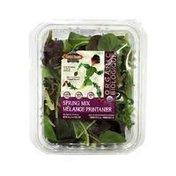 Classic Salads Spring Mix