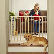 """Toddleroo by North States 28-42"""" Wide x 30"""" High Stairway Swing Safety Gate"""