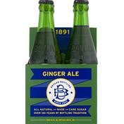 Boylan Bottling Ginger Ale, All Natural