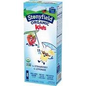 Stonyfield Organic Kids Lemonade & Strawberry Lowfat Yogurt