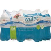 Hannaford Purified Drinking Water