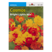 Burpee Cosmos Seeds