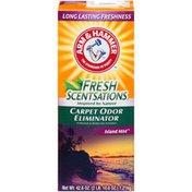 Arm & Hammer Island Mist Carpet Odor Eliminator,