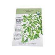 Botanical Interests Organic Shishito Chili Pepper