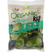 Dole Fresh Organic Caesar Kit
