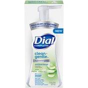 Dial Antibacterial Foaming Hand Wash, Aloe