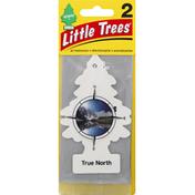 Little Trees Air Freshener, True North