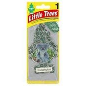 Little Trees Air Freshener, Eucalyptus
