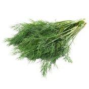 Organic Fennel Leaves Bunch