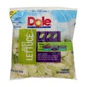 Dole Just Lettuce Salad Bag