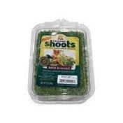 ra nanoshoots 100% Bold Broccoli