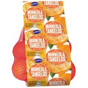 Sunkist Minneola Tangelos