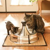 PetSafe Drinkwell Stainless Multi-Pet Fountain - Stainless Steel