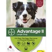 Advantage Large Dog Flea Treatment