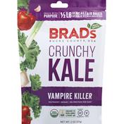 Brad's Raw Kale, Crunchy, Vampire Killer