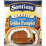 Santiam Golden Pumpkin, Fancy