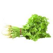 Organic Chinese Celery