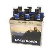Arcadia Ales Loch Down Scotch Ale