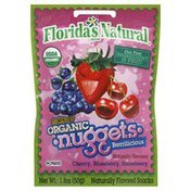 Florida's Natural Au'some Organic Nuggets, Berrilicious