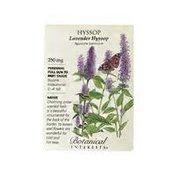 Botanical Interests Hyssop Lavender