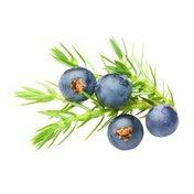 Organic Juniper Berries Package