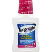 Kaopectate Diarrhea & Upset Stomach, Peppermint