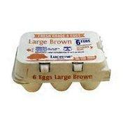 Lucerne Large Brown Eggs