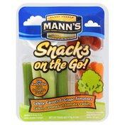 Mann's Celery, Carrots & Grape Tomatoes, Lite Ranch Dip