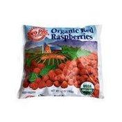Sno Pac Organic Red Raspberries