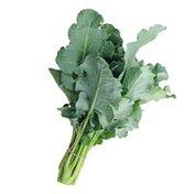 Organic Chinese Broccoli (Gai Lan)