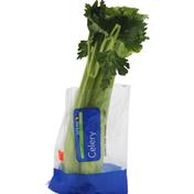 Signature Kitchens Celery