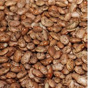 West Star Pinto Beans