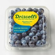 Driscoll's Blueberries