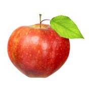 Organic Jersey Mac Apple