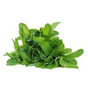 Organic Mint