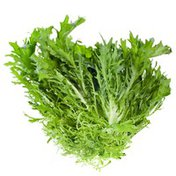 Frisee (Chickory) Lettuce Bunch