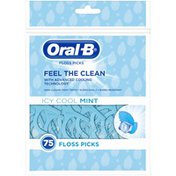 Oral-B Complete Dental Floss Picks, Icy Cool Mint