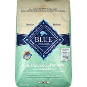 Blue Food for Puppies, Natural, Life Protection Formula, Puppy, Natural Lamb and Oatmeal Recipe