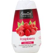 Essential Everyday Air Freshener, Gel, Raspberry