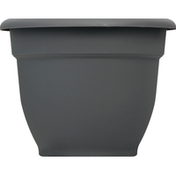 Bloem Planter, Ariana Charcoal, 6 Inches