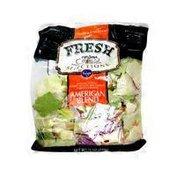 Kroger Fresh Selections American Blend; Romain Lettuce, Iceberg Lettuce, Red Cabbage, Carrots & Radish