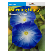 Burpee Morning Glory Heavenly Blue