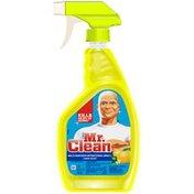 Mr. Clean Antibacterial Lemon Multi-Surface Cleaner