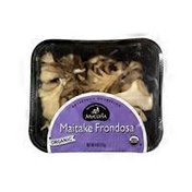 Mycopia Organic Maitake Frondosa Mushrooms