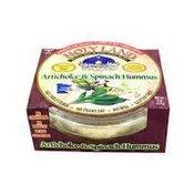 Holy Land Artichoke & Spinach Hummus