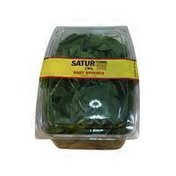 Satur Farms Baby Spinach