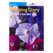 Burpee Morning Glory 's Tall Mix