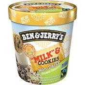 """Ben & Jerry's Non-dairy """"milk"""" & Cookies Frozen Dessert"""